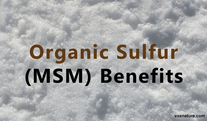 Here You Ll Learn More About Organic Sulfur Msm And Its Many Benefits As Well As How To Incorporate It Into Your Own Life Msm Benefits Msm Sulfur Benefits