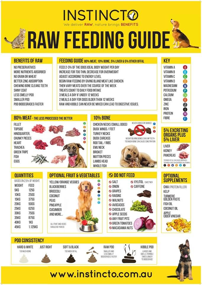 Raw Feeding Guide Feeding Puppy Dog Weight Raw Dog Food Recipes