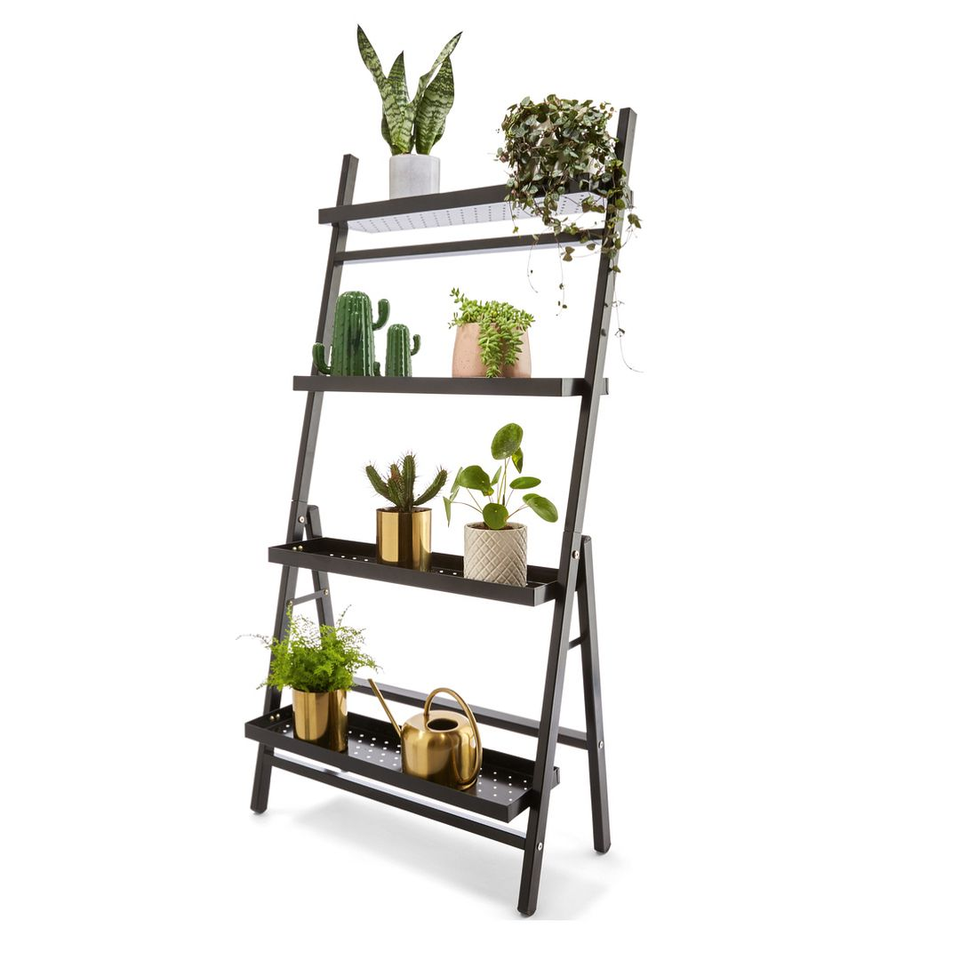 Spotted a couple of new finds online including this metal tiered