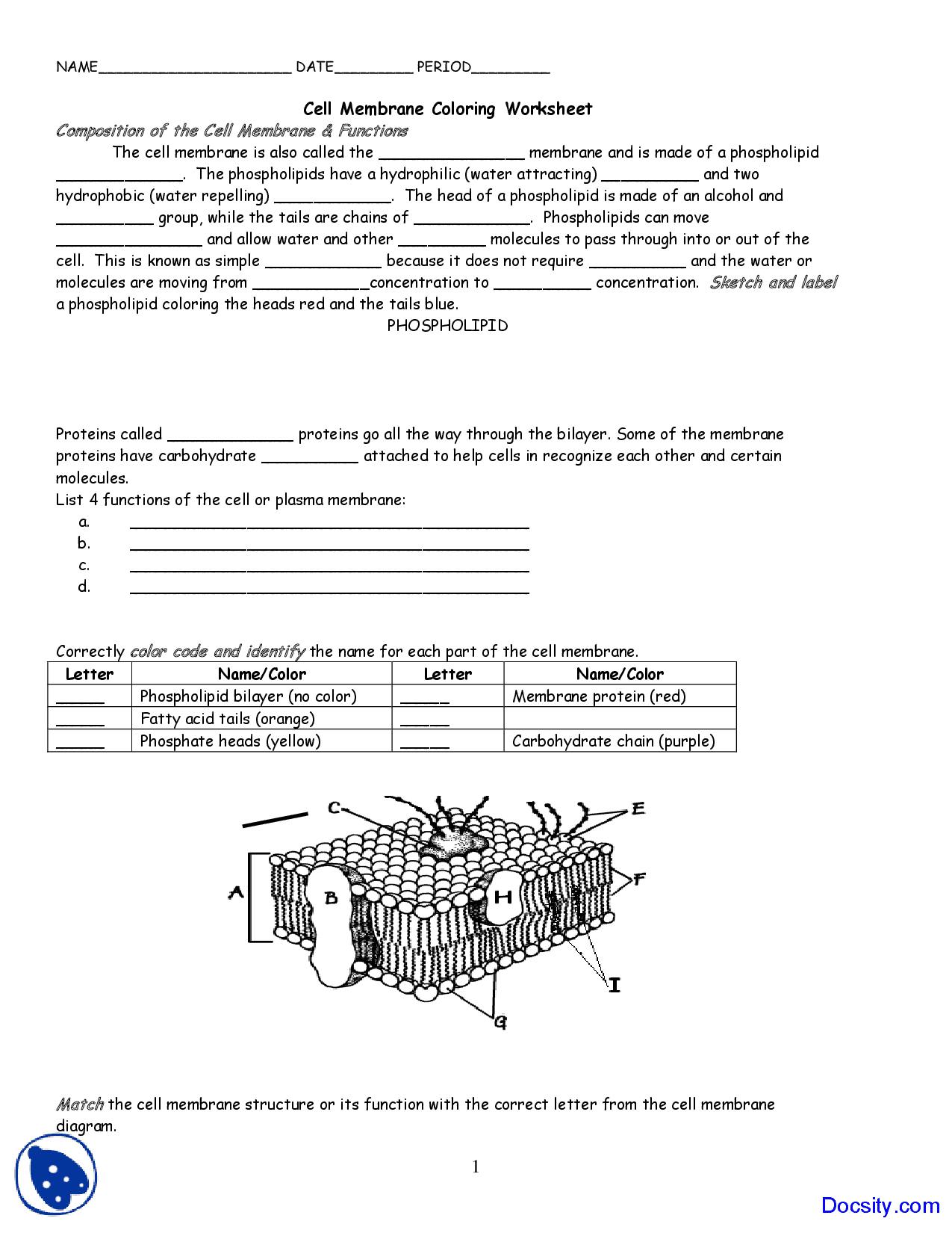 Worksheets Cell Membrane Worksheet Answer Key