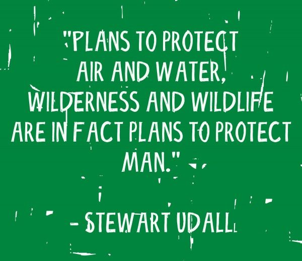 Protect Nature Quotes: 11 Types Of Photos Nonprofits Should Post On Social Media