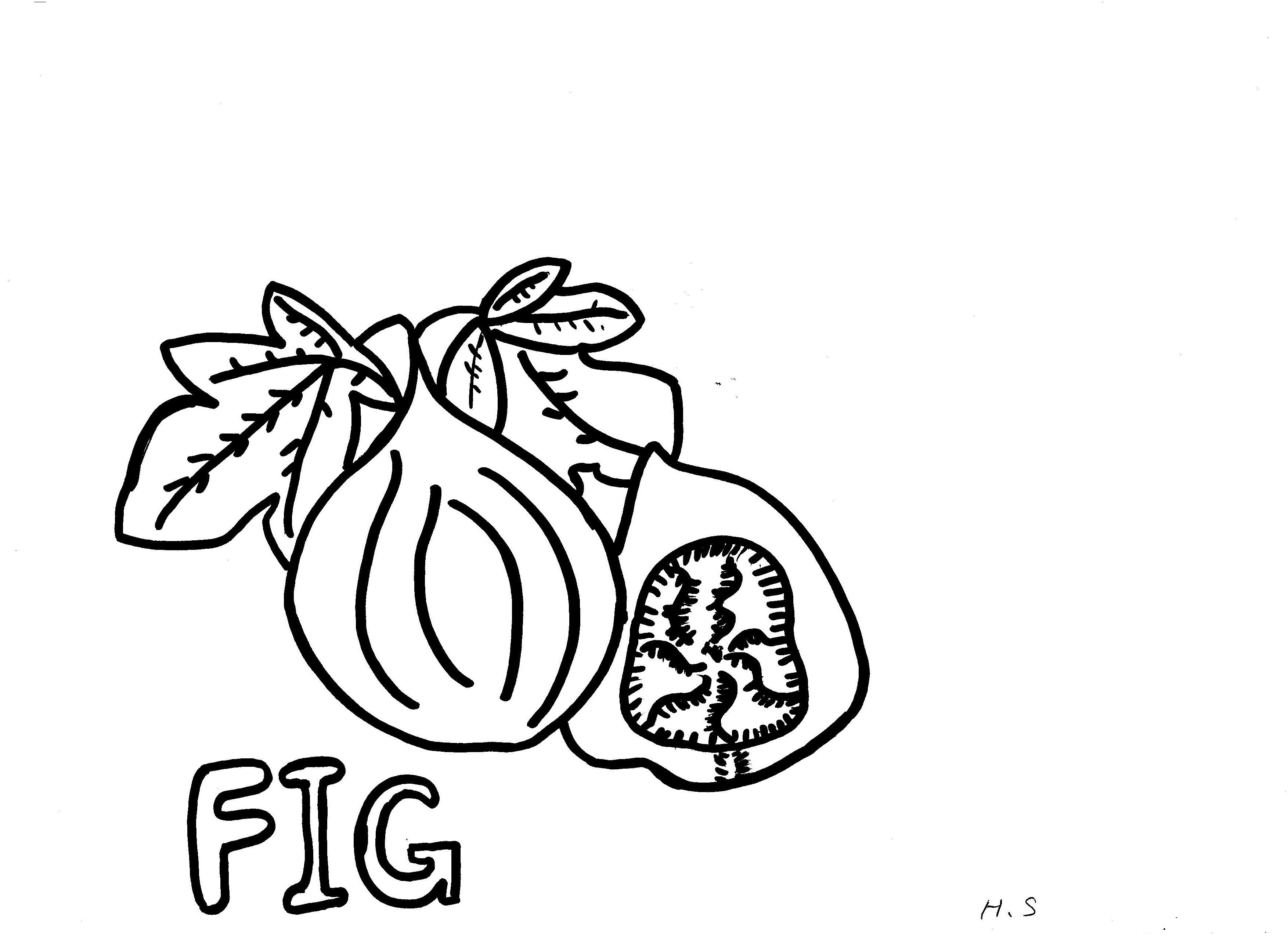 Coloring Page Fig Tree. awesome Fig Coloring Pages For Kids  book club crafts Pinterest