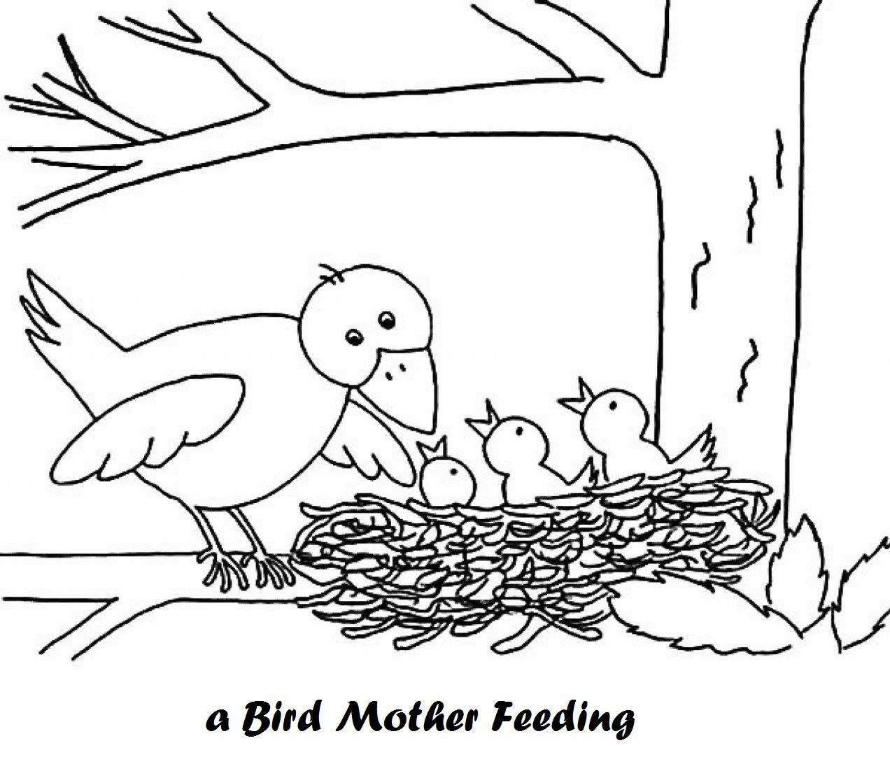 Mother Bird And Babies In Nest Coloring