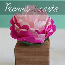 tutorial diy peonia di carta crespa sweet behe me creative inside