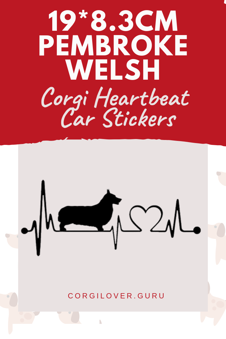 Love Can T Always Be Expressed With Words But It Can Be Expressed With Action So Why Not Share The Love Of Corgi Pembroke Welsh Corgi Corgi Funny Welsh Corgi [ 1102 x 735 Pixel ]