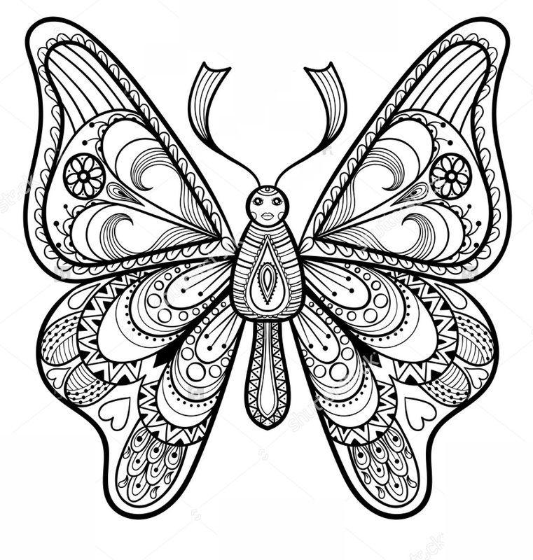 Pin Auf Schmetterling