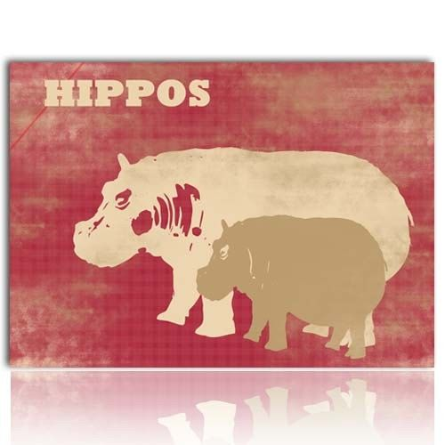 like the colors Hippos! Pinterest Baby hippo, Hippopotamus and