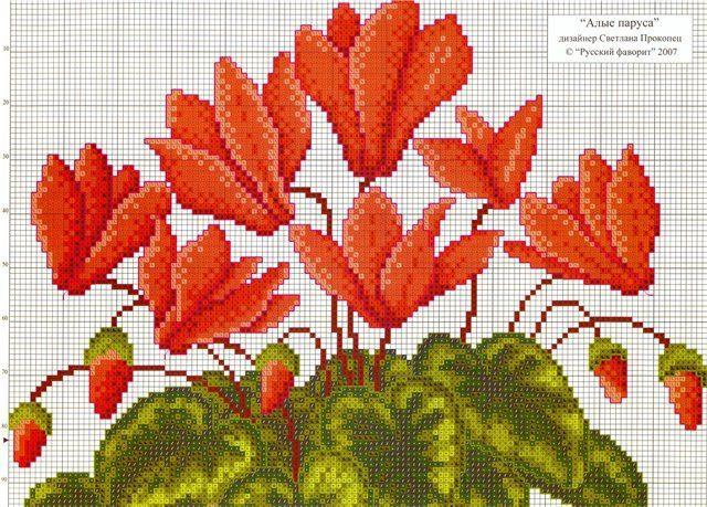 Gallery.ru / Фото #154 - Цветы 2 - logopedd