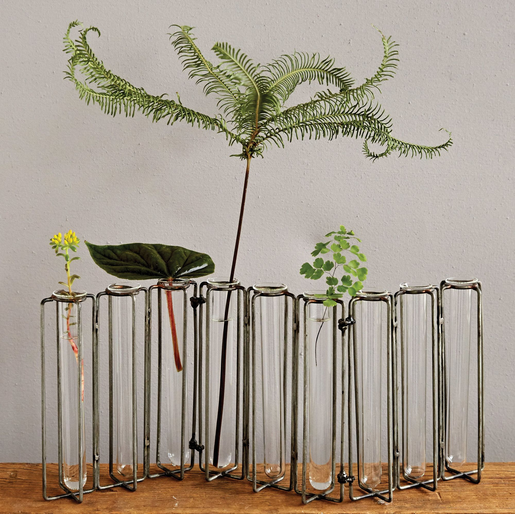Botanist metal and 9 glass test tubes jointed vase tulipiere et botanist metal and 9 glass test tubes jointed vase reviewsmspy