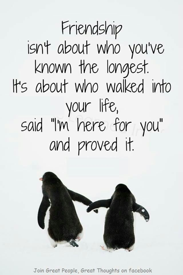 Quotes About Living Life With Your Best Friend