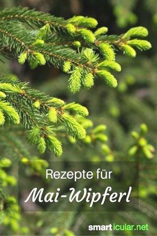 Jeden Frühjahr treiben Tannen und Fichten neue Zweige. Diese enthalten viele gesunde Wirkstoffe, die...