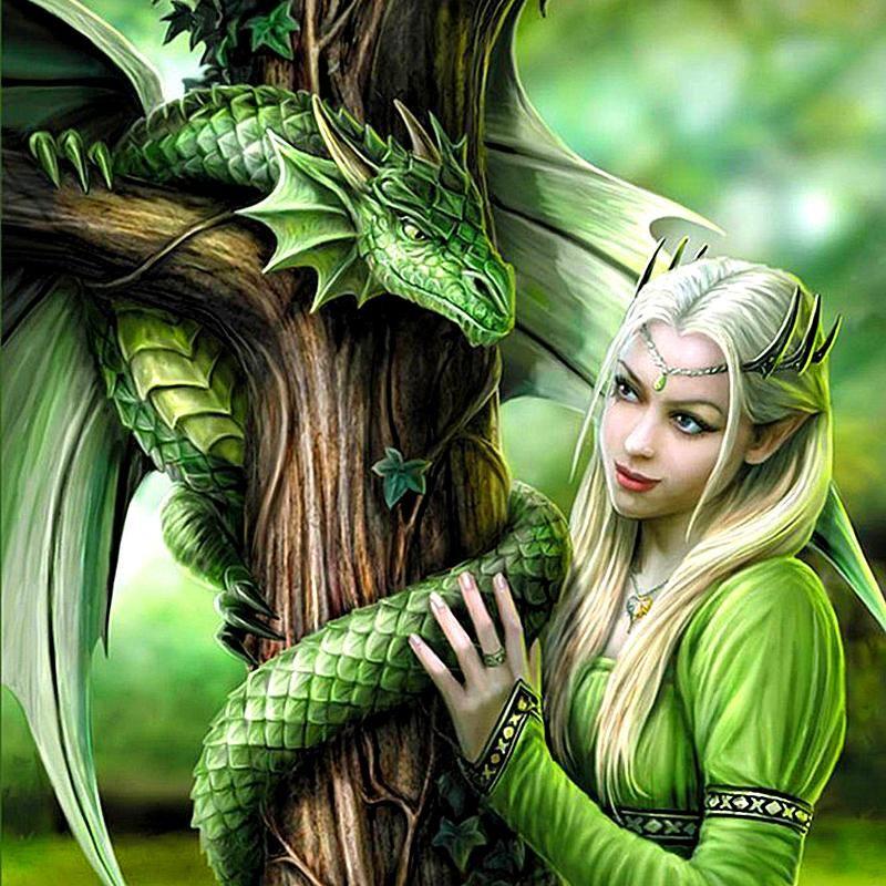 5d diy diamond painting princess dragon diamond