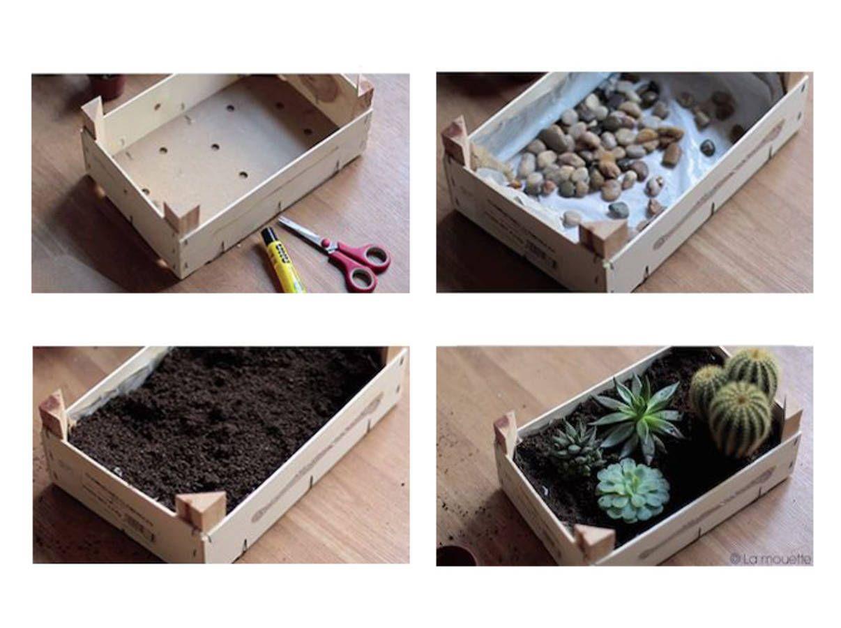 cagette en bois pour un mini jardin d 39 int rieur home pinterest cagette mini jardins et en. Black Bedroom Furniture Sets. Home Design Ideas