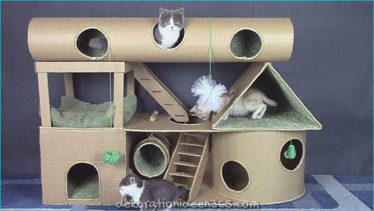 Photo of Juegos para gatos domésticos que necesitan cada vez más entretenimiento »Ideas vivas para inspirarse