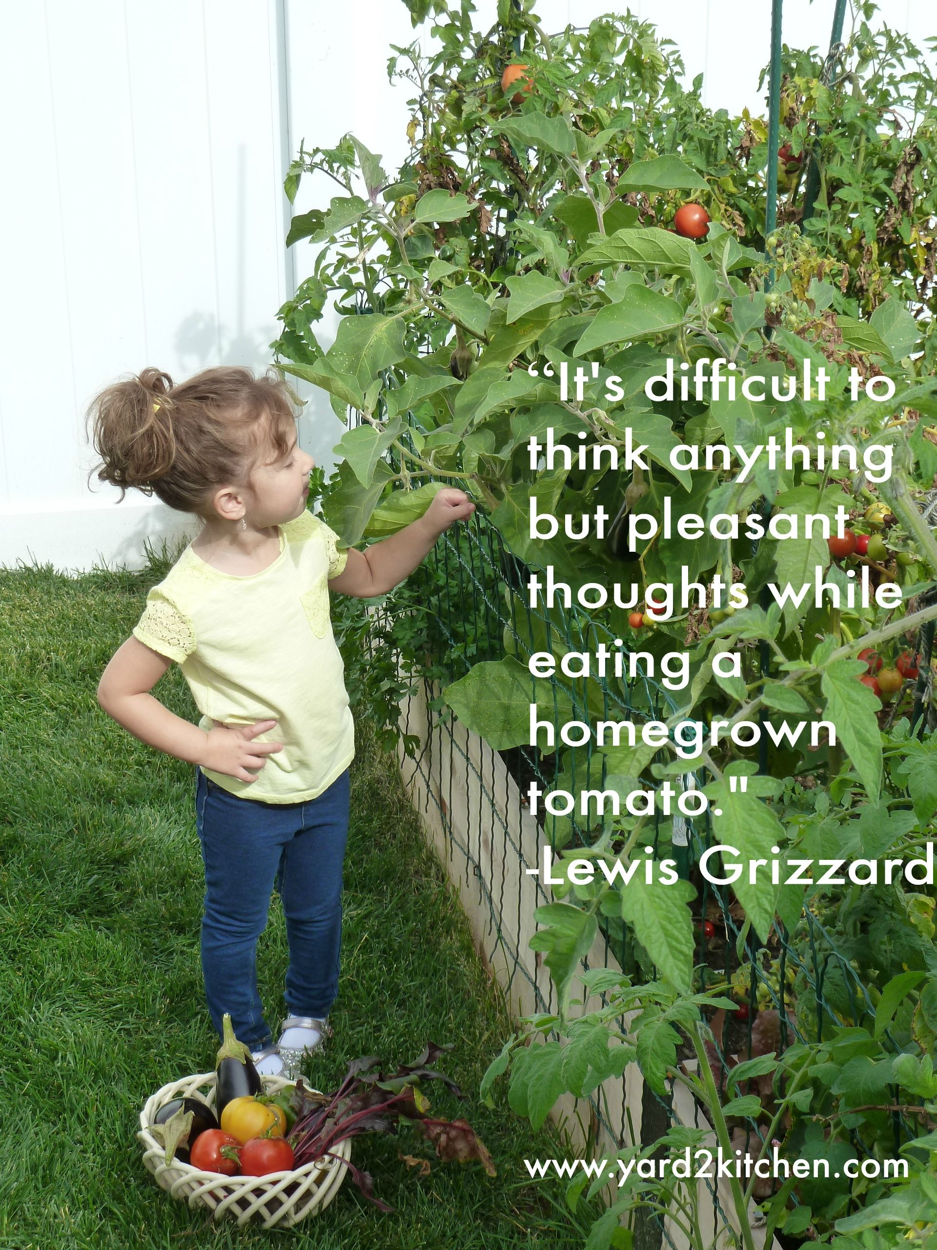 our backyard organic gardens are fun for the whole family