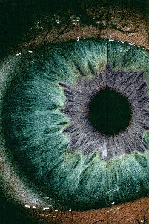 Macro Human Eye | Macro photography of the human eye makes me feel like we're way more ...