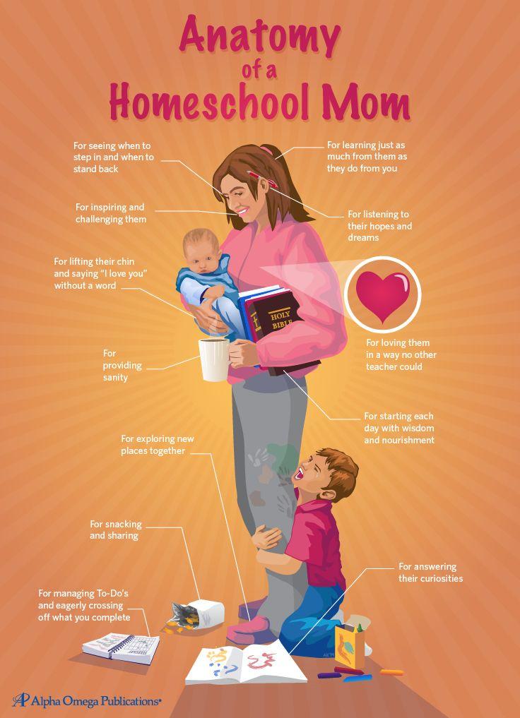 Anatomy of a Homeschool Mom #homeschool #homeschooling ...