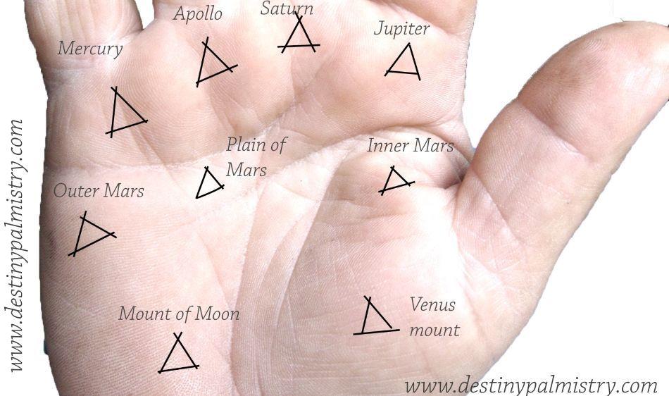 Triangle Mark On The Palm Mounts Palmistry Palmistry Palm Reading Triangle Meaning