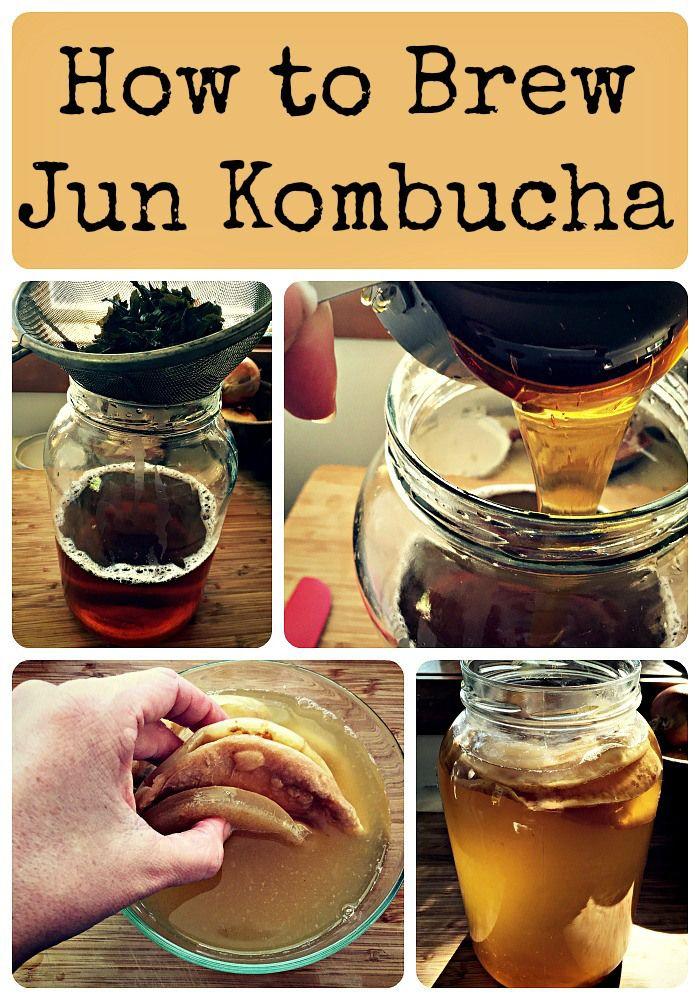 How to Brew Jun Kombucha Recipe Jun kombucha, Kombucha