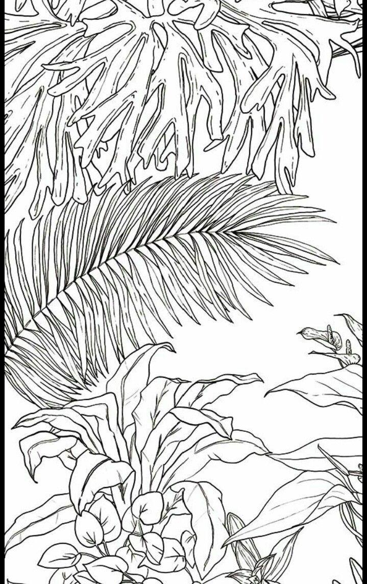Pin by Elizabeth Larsson on Малюнки Jungle art, Jungle