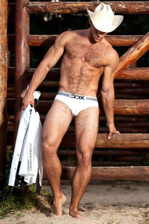 Hary Naked Cowboy Blog