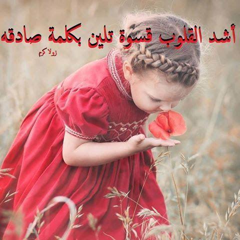 خاطبوا القلوب برفق ...ففي كل قلب توجد زهرة تبتهج بلطف العبارة