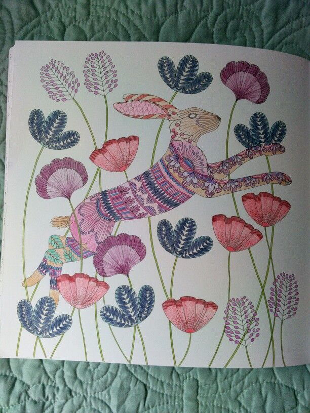 Image Result For Animal Kingdom Coloring Book Rabbit