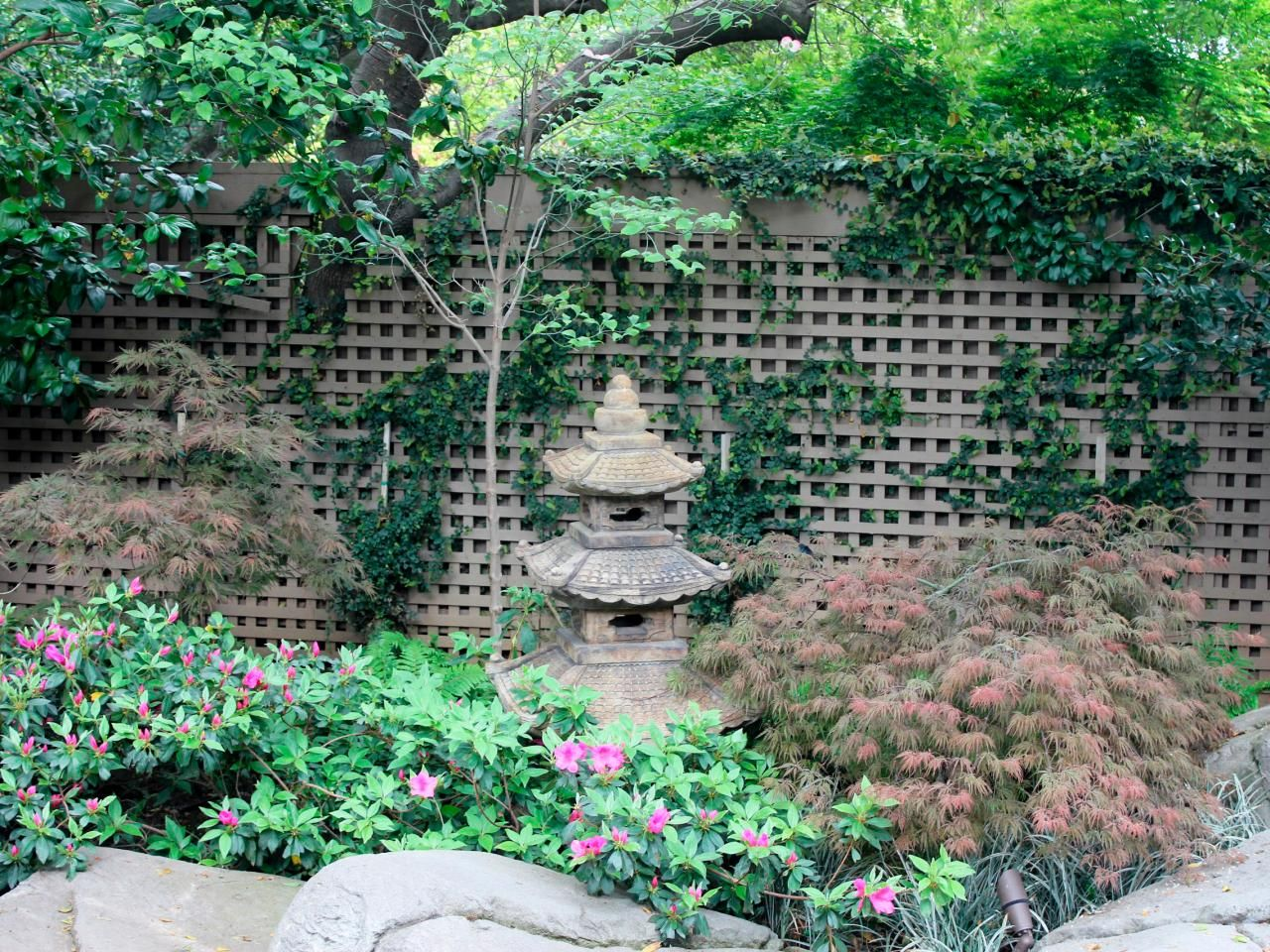 A Sprawling Trellis With Vines Provides Privacy For A Sunny Backyard. A  Garden Statue Is