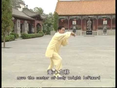 Chen Style Tai Chi Old Frame Routine Two 1/2