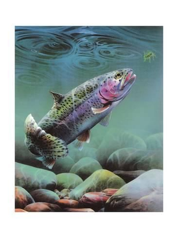 Giclee Print: Rainbow by Spencer Williams : 24x18in