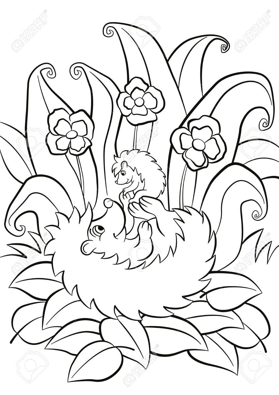 malvorlagen die hedgegoh hält kleine niedliche igelbaby
