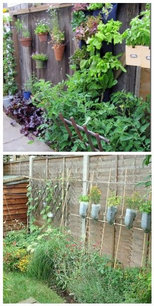 Just Love The Multiple Vertical Garden Solutions Here   TOP: Pots Hang On  The Fence