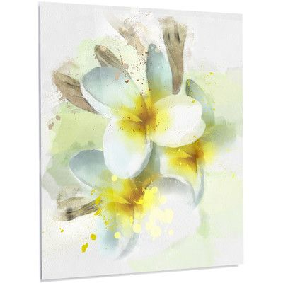 DesignArt Floral \'Frangipani Flowers Watercolor\' Painting Print on ...