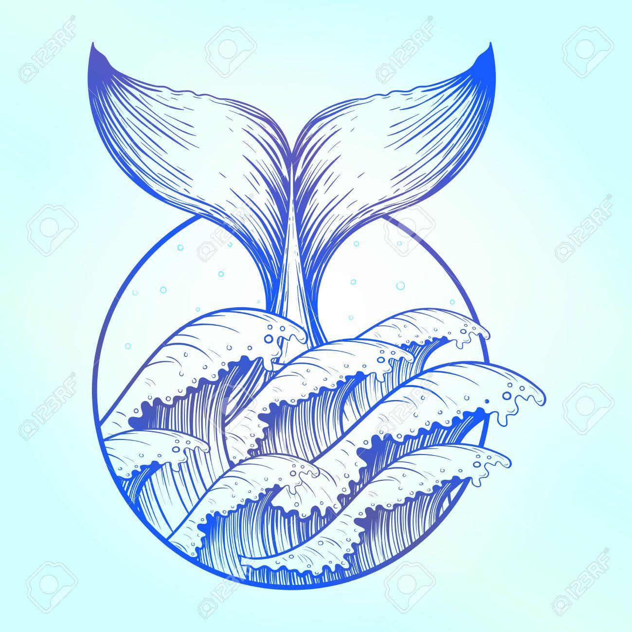 Coloriage Queue De Baleine.Image Result For Whale Drawing Baleine Dibujos Tatuajes De