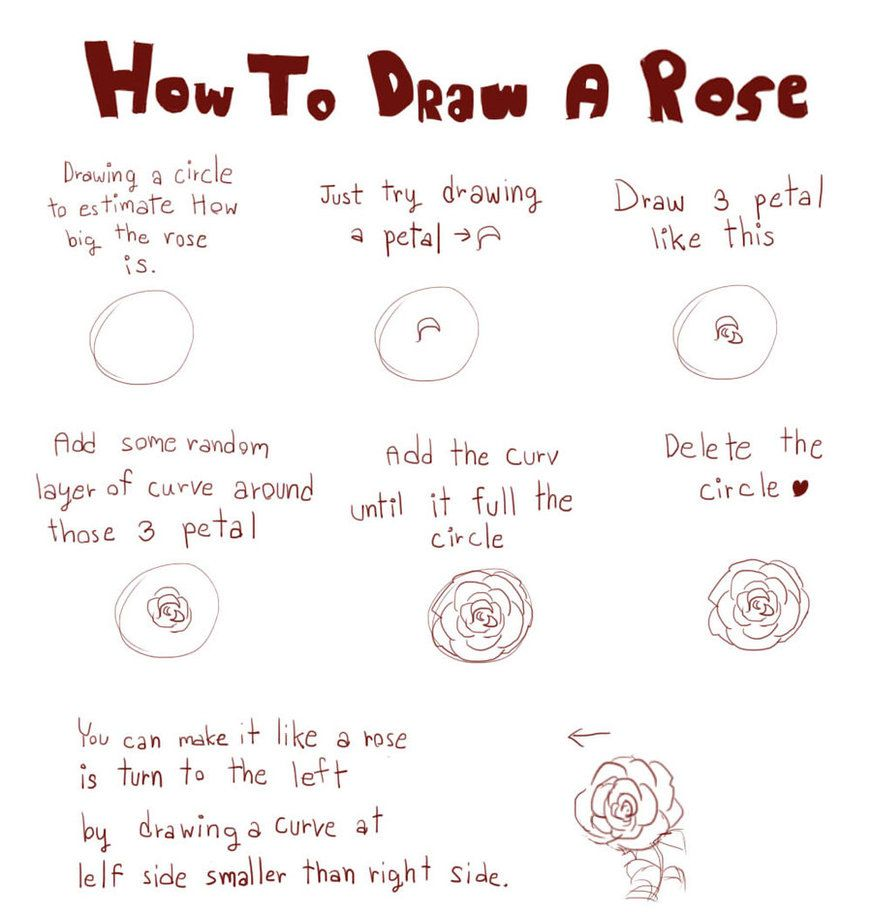 How To Draw Roses How To Draw A Rose By Linnil On Deviantart How To Draw