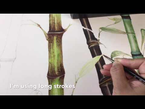 Acrylmalen Malen Lernen Anleitung Zum Bambus Acrylic Painting