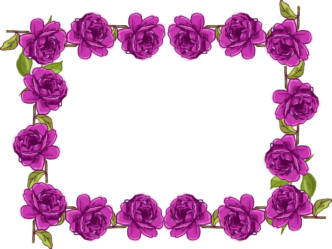 Purple Rose Frame Purple Borders and Fra...
