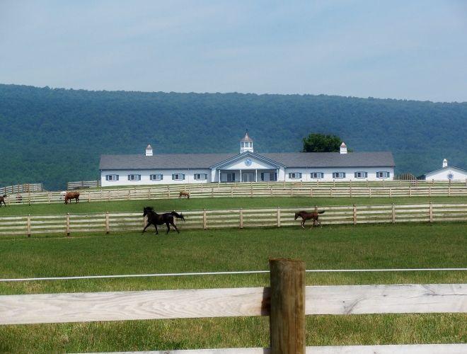 Kempton Pa 0 Horse Barns Equestrian Facilities Barn Stables