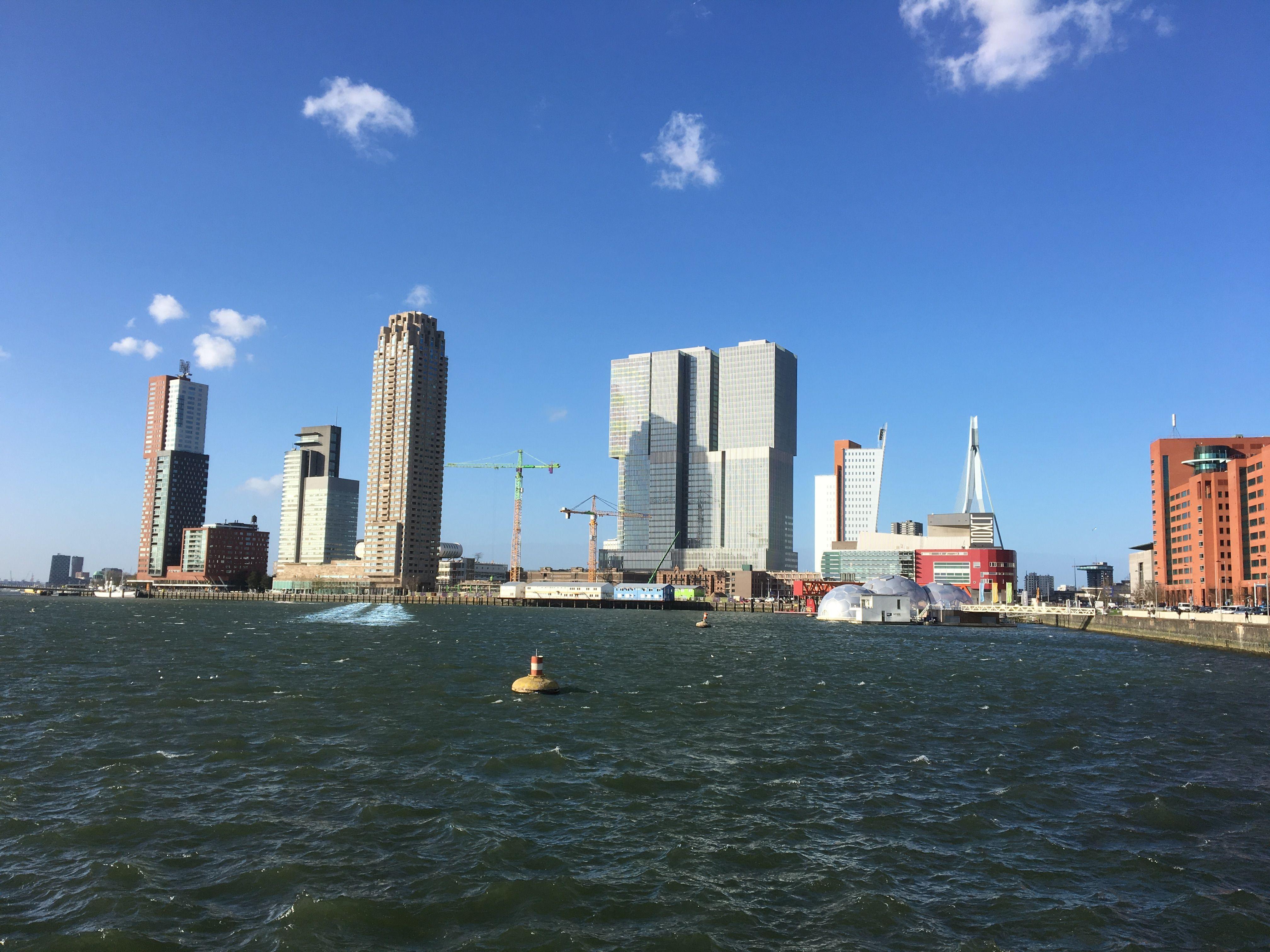 Zicht over de Rijnhaven naar de Wilhelminapier.