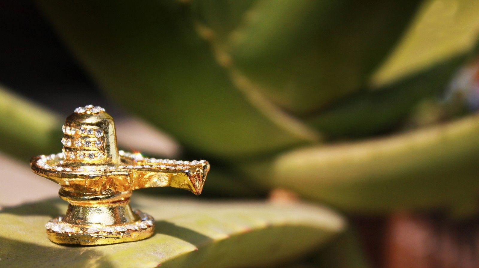 Shiv Linga With High Width Yahoo Image Search Results Shiva Lord Shiva Shiva Linga