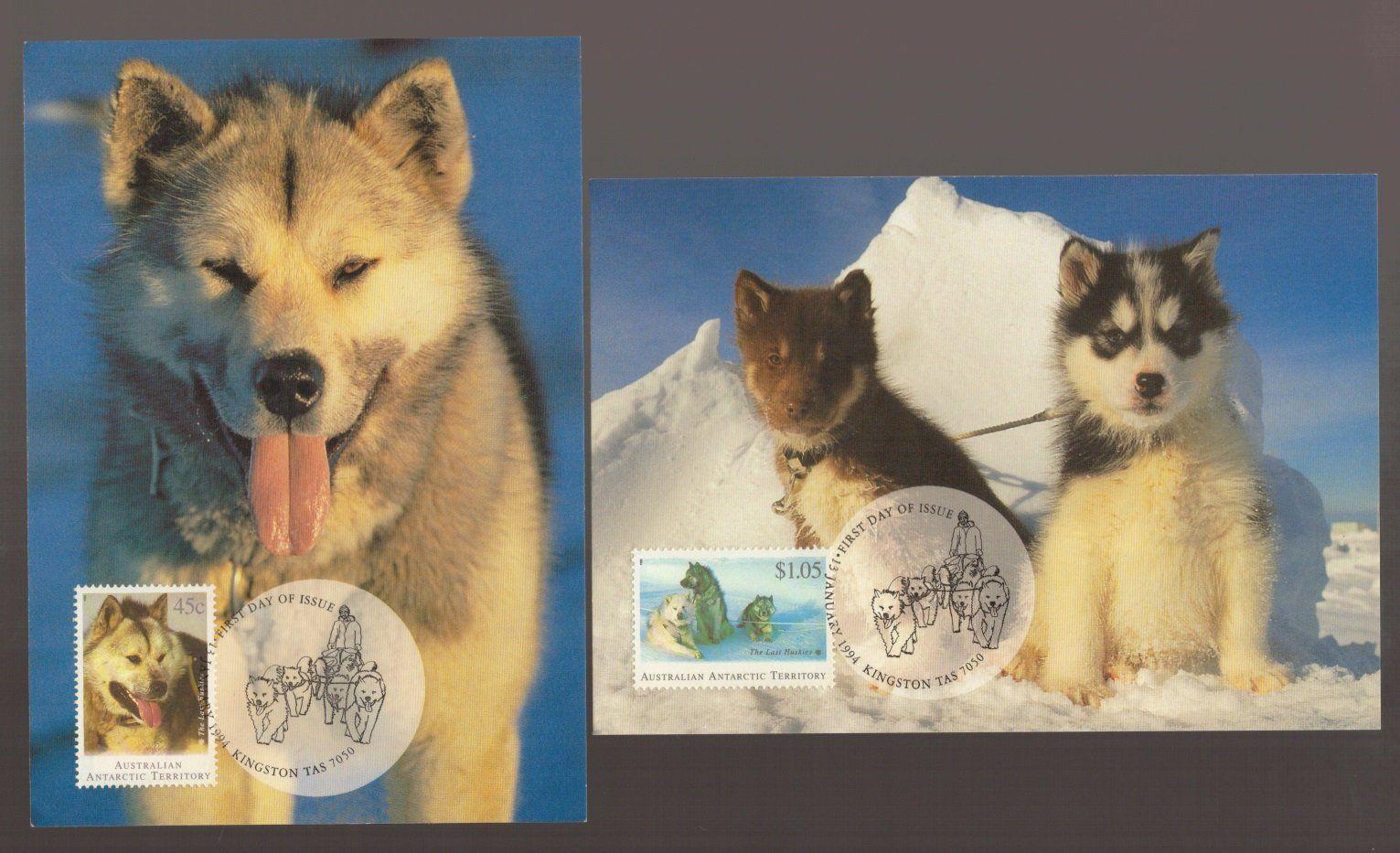 Husky Dog Last Huskies Aat Antarctic Territory Set Of 4 Australia