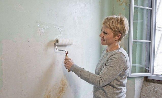 Nettoyer Et Traiter Un Mur Couvert De Salpetre En 2020 Salpetre Traitement Humidite Et Moisissure Mur