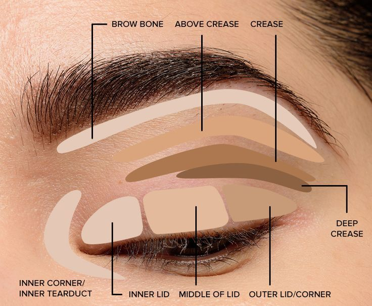 Photo of Makeup Tips for Beginners: Eye Shadow Placement & Eye Makeup Diagram – Make Up Tips
