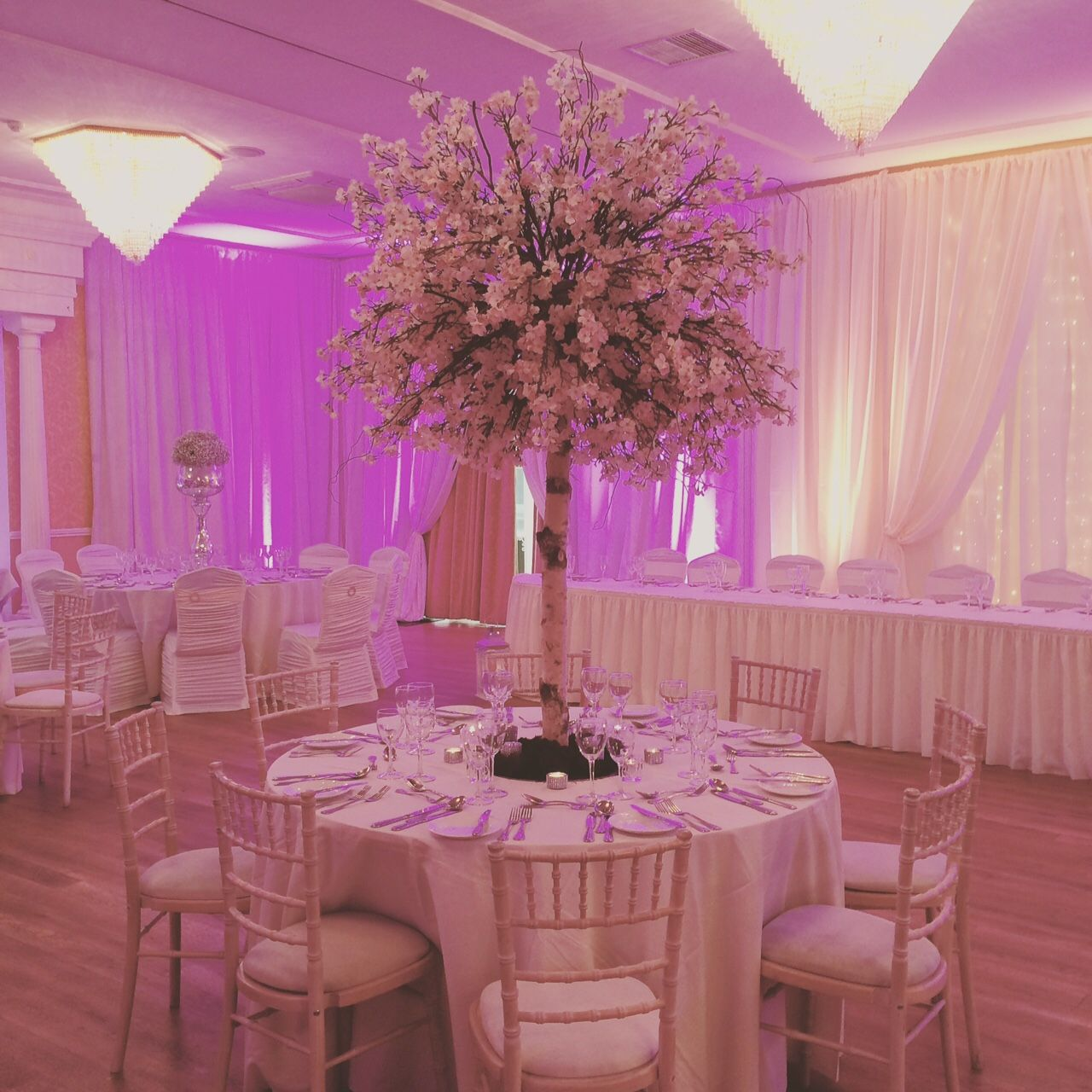 Cherry blossom table centrepieces available to hire from magic cherry blossom table centrepieces available to hire from magic moments junglespirit Choice Image