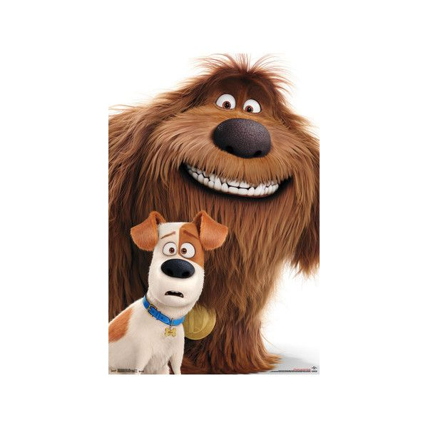 Secret Life Of Pets Adorable Duo Poster 5 99 Liked On
