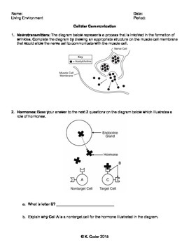 This 3 page worksheet has questions relating to how cell ...
