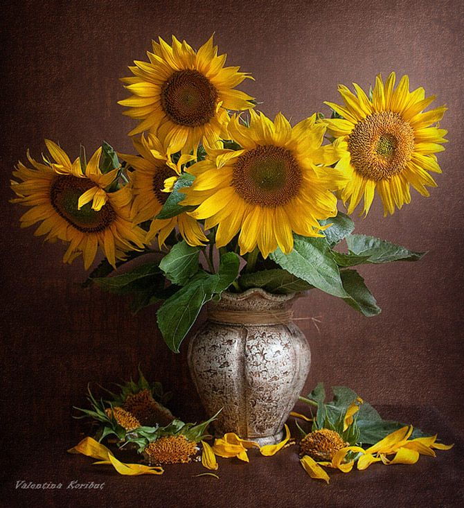 Amazing Still Life Photography By Valentina Koribut Part 1