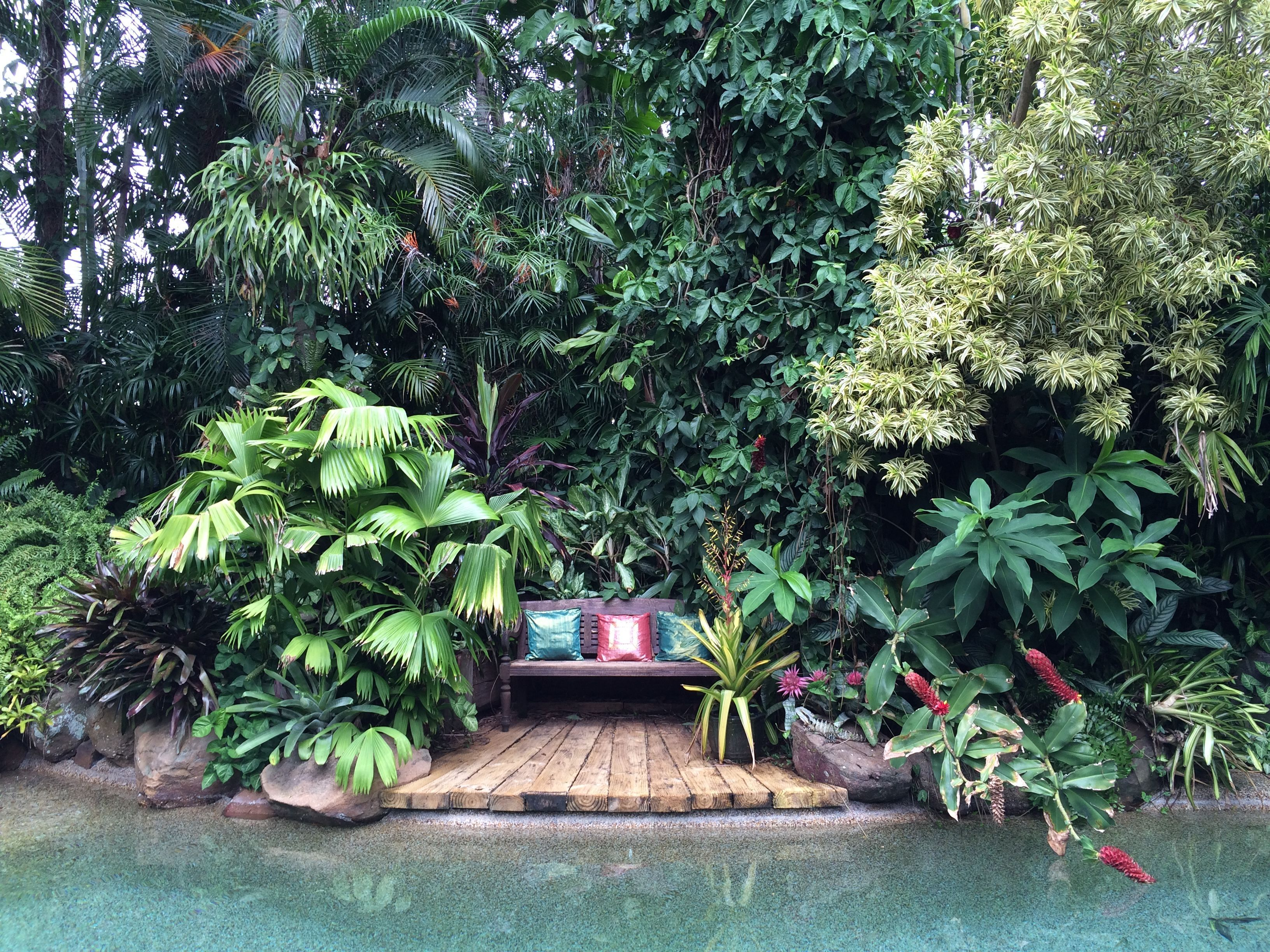 Tropical Garden, Tropical Pool More