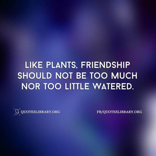 like-plants-friendship-should-not-be-too-much-nor-too-little-watered