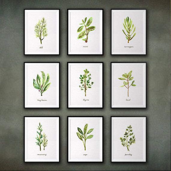 Kitchen Art Vegetables Print Botanicals Kitchen Art: Herb Watercolor Painting, Kitchen Art, Set Of 9 Herb Print
